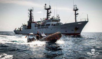 Campagne Sea Shepherd